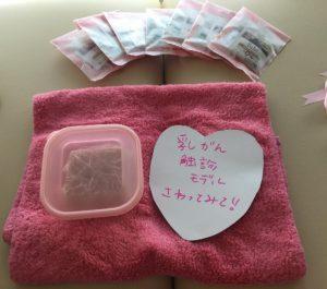 pinkribbon breast cancer ピンクリボンイベント 乳がん触診モデル 写真